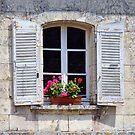 Shuttered Window by Amanda White