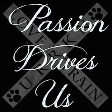 Passion Drives Us by URRKN