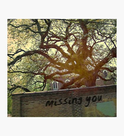 i miss you in the memories we haven't made yet... Photographic Print