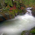 Honey Hollow Gorge - Preston Brook - Wide by Stephen Beattie
