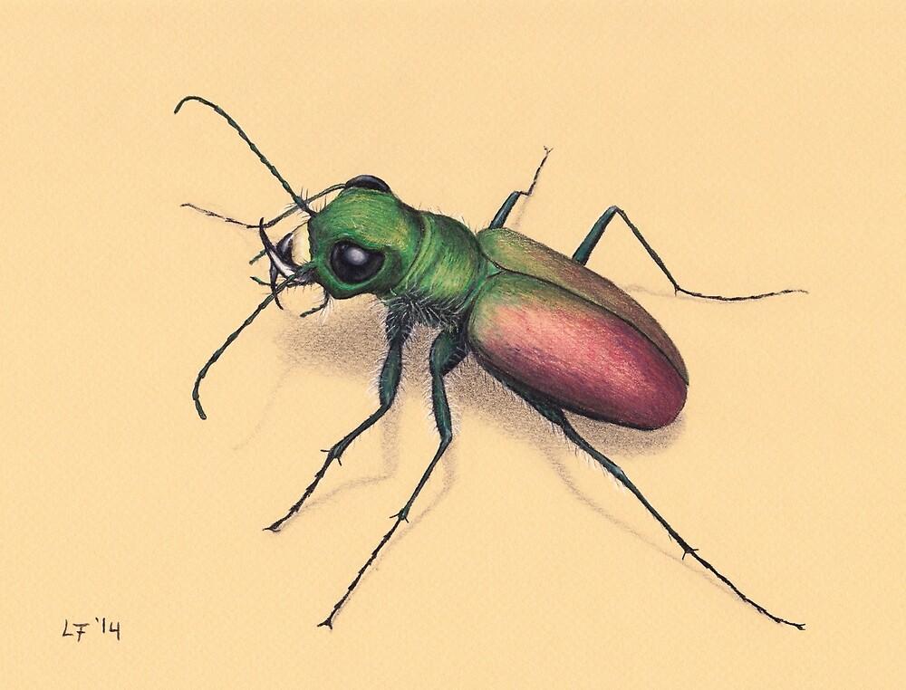 Beetle by Lars Furtwaengler