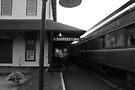Cooperstown Station by John Schneider