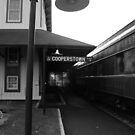 Cooperstown Station by John Schneider