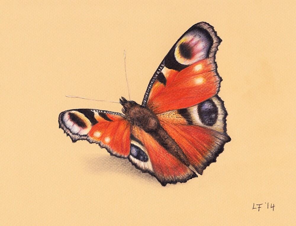 Butterfly by Lars Furtwaengler