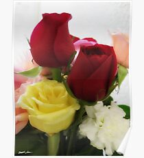 Mixed Cut Roses 1 Poster