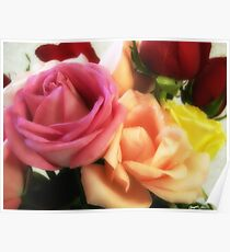 Mixed Cut Roses 3 Poster