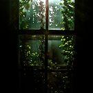 Sleeping Beauty's View by Ainsley Kellar Creations