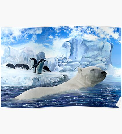 How Can a Polar Bear This? Poster