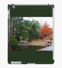 Suspension Bridge At Abercrombie iPad Case/Skin