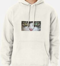 Cat Stare Down Pullover Hoodie