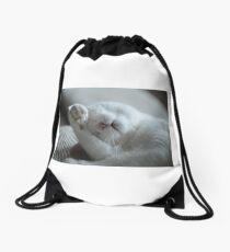 Cat OMG Drawstring Bag