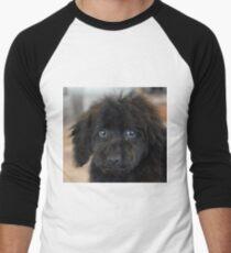 Sky, An Arizona Mini-Toy Poodle Men's Baseball ¾ T-Shirt