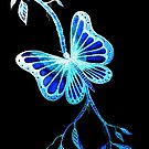 Blue Butterfly by Linda Callaghan