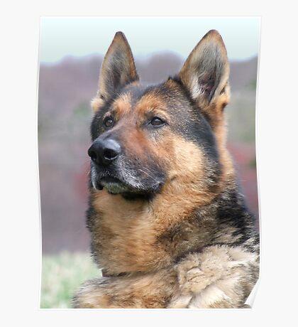 War Dog Poster