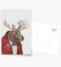 Moose in Leather Postcards