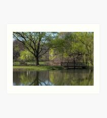 Willows Park In Spring Art Print