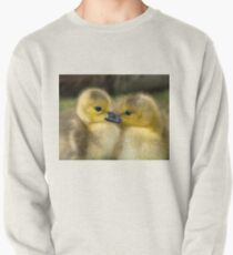 Baby Duck Love Pullover