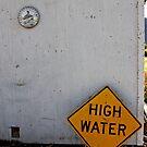 High Water in the Desert Heat by Julia Washburn