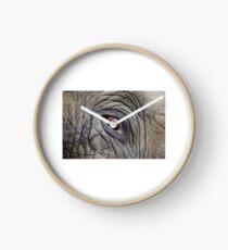 Elephant Eye Clock