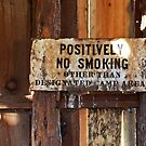 POSITIVELY NO SMOKING by Julia Washburn