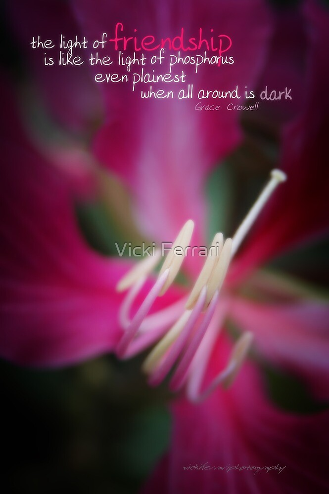 Phosphorous Friendship © Vicki Ferrari Photography by Vicki Ferrari