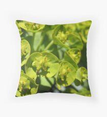 Lime Jello Plant Throw Pillow