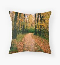 Pathways - Autumn Rain at 1,000 Islands Throw Pillow