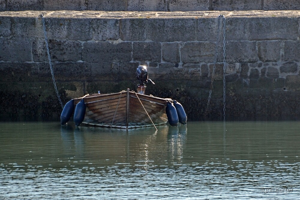 Small Brown Boat at Lyme Harbour,Dorset UK by lynn carter