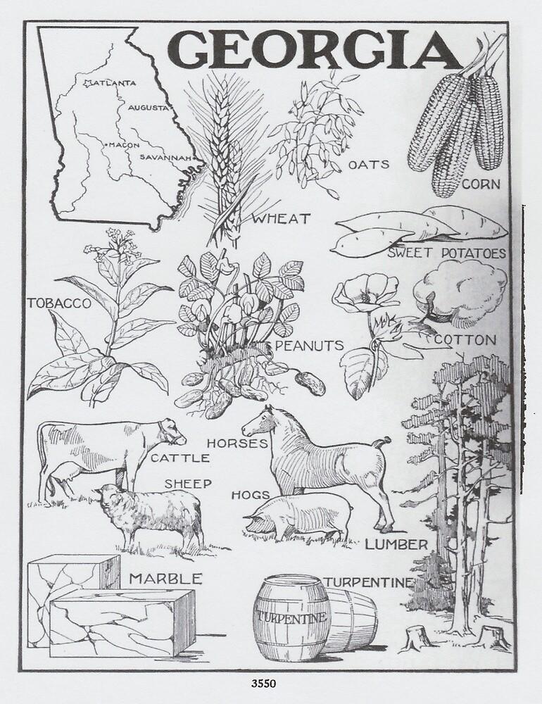 «Mapa Agrícola Vintage de Georgia (1915)» de BravuraMedia