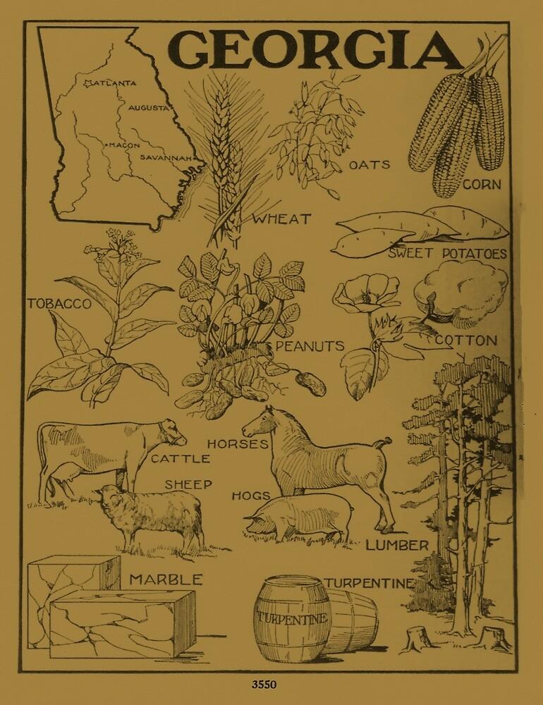 «Mapa Agrícola Vintage de Georgia (1915) - Bronceado» de BravuraMedia