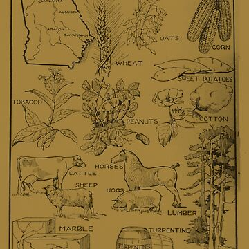 Mapa Agrícola Vintage de Georgia (1915) - Bronceado de BravuraMedia