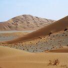 Deep desert ramblings 2 by Peter Doré