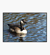 Water World - Lady of the Lake Photographic Print