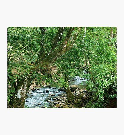 La Poza del Cajon, river near San Juan de Puriscal Photographic Print