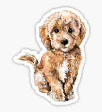 Poodle/ Goldendoodle Puppy Watercolor Illustration Sticker