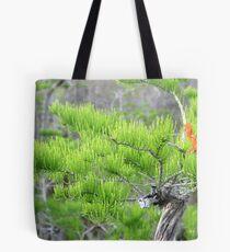 Dwarf Cypress Tree Tote Bag