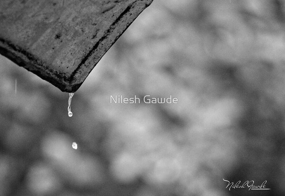 monsoon by Nilesh Gawde