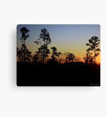 South Carolina Sunset Canvas Print