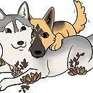 Husky, shepherd, love, and succulents by Ashley Siemon