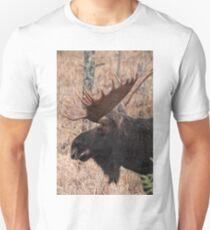 Bull moose - Algonquin Park, Ontario T-Shirt