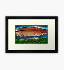 Of a Feather 4 Framed Print