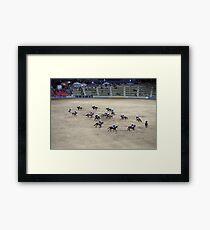 RES 2010 - 02 Framed Print
