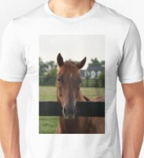 Commentator - Old Friend's Equine T-Shirt