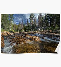 Utah Nature Photography - Provo River Poster