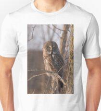 Great Grey Owl, Ottawa, Ontario T-Shirt