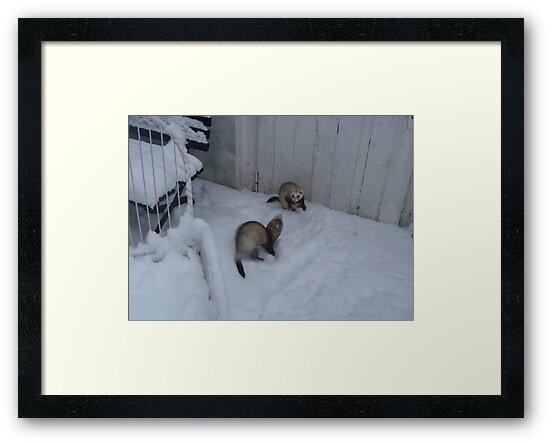 Ferret snowfight by MordaxFurritus
