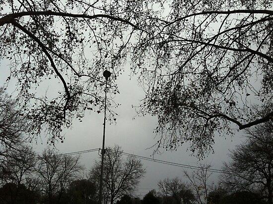 Melbourne Mist by evermont
