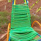 chair? by Rachel Williams