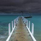 Safety Beach Jetty by Matt Bishop