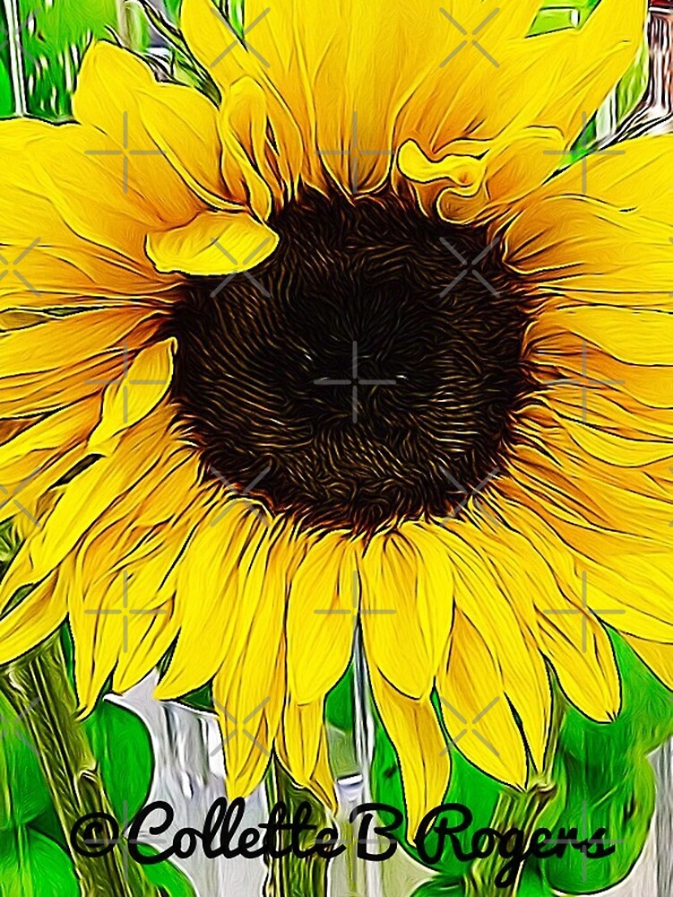SUNFLOWER LOVE by Collette B. Rogers